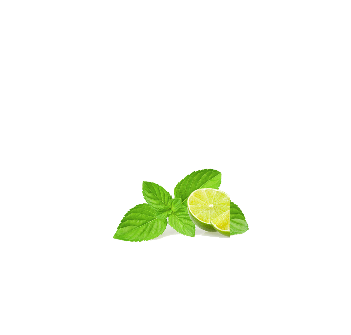 Leaf Download Clip art - Mint, lemon 1200*1146 transprent Png Free ...