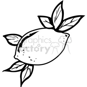 Download black and white. Lemons clipart lemon leave