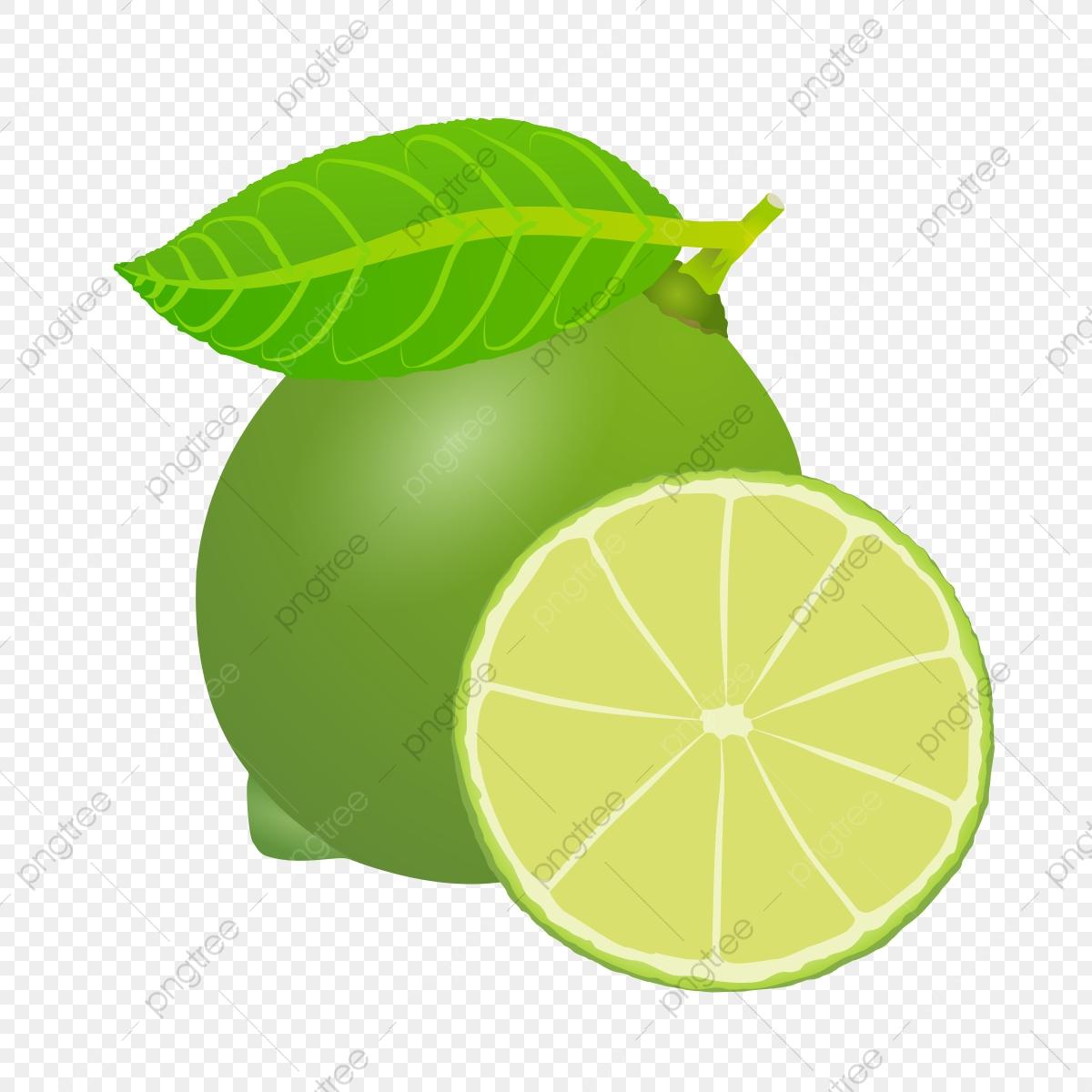 Lemons clipart limon. Lemon mint png transparent