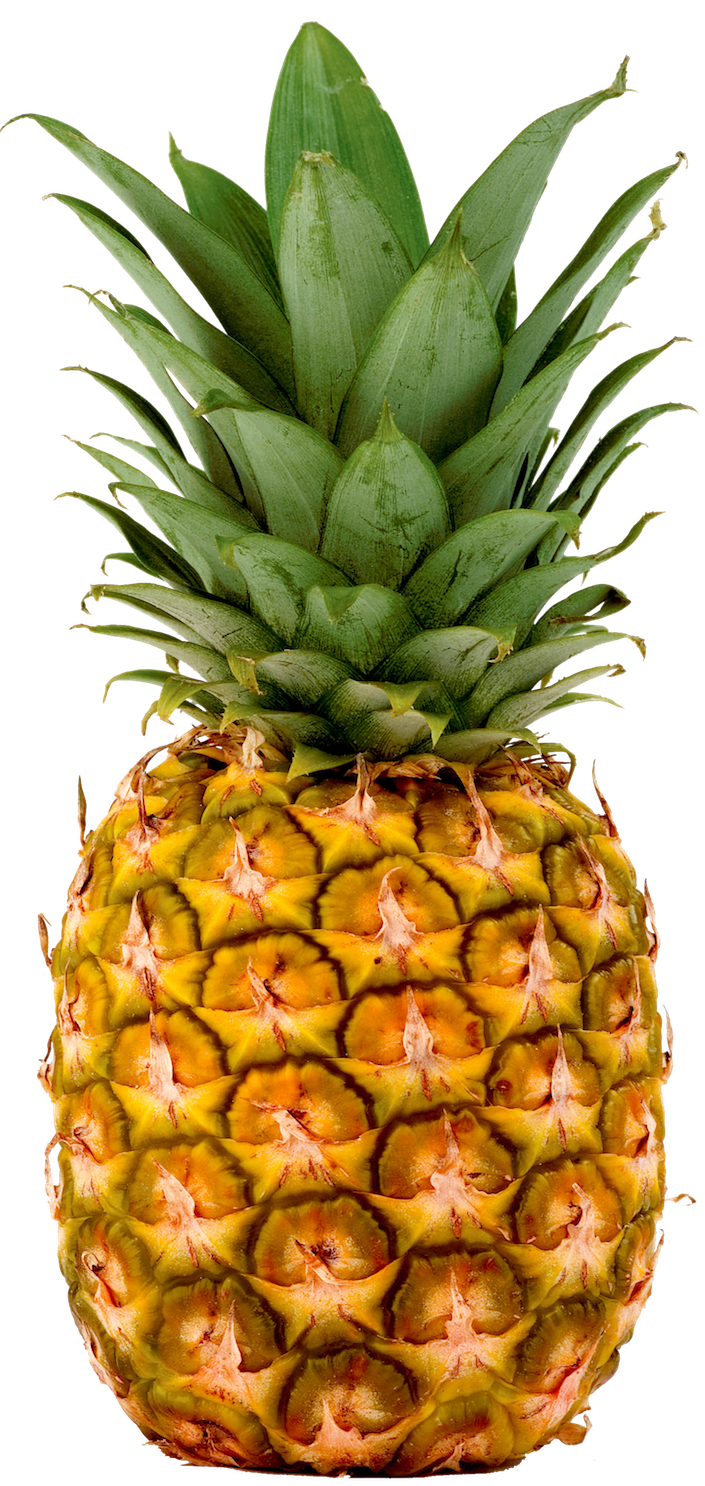 Pineapples fresh imports. Lemons clipart pineapple