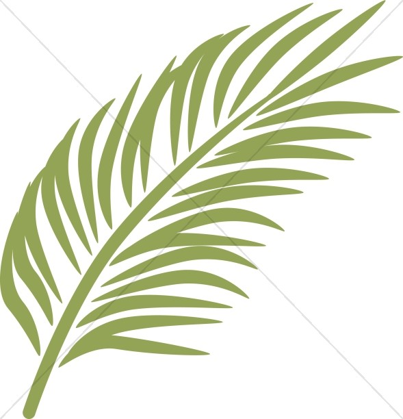 In calming green sunday. Palm clipart single