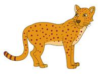 Free clip art pictures. Leopard clipart