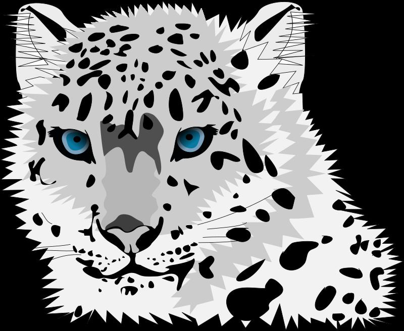 Leopard line