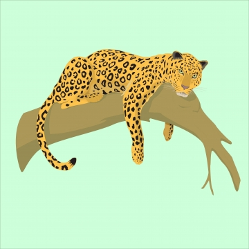 Leopard clipart vector. Animal png psd and