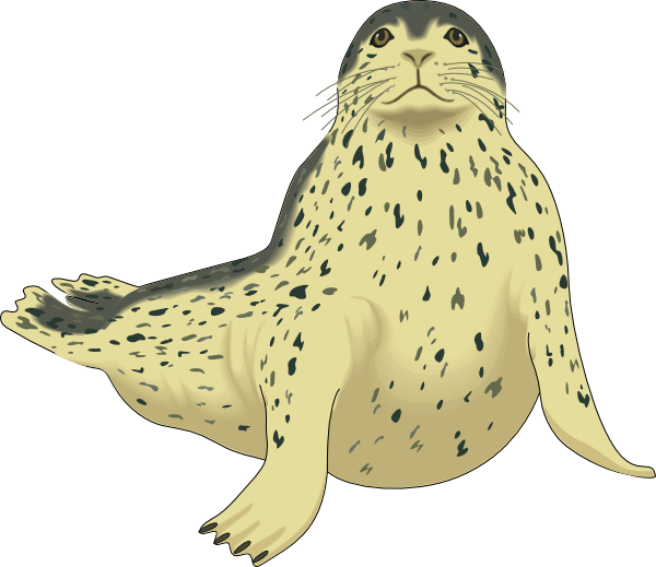 Leopard clipart vector. Spotted seal clip art