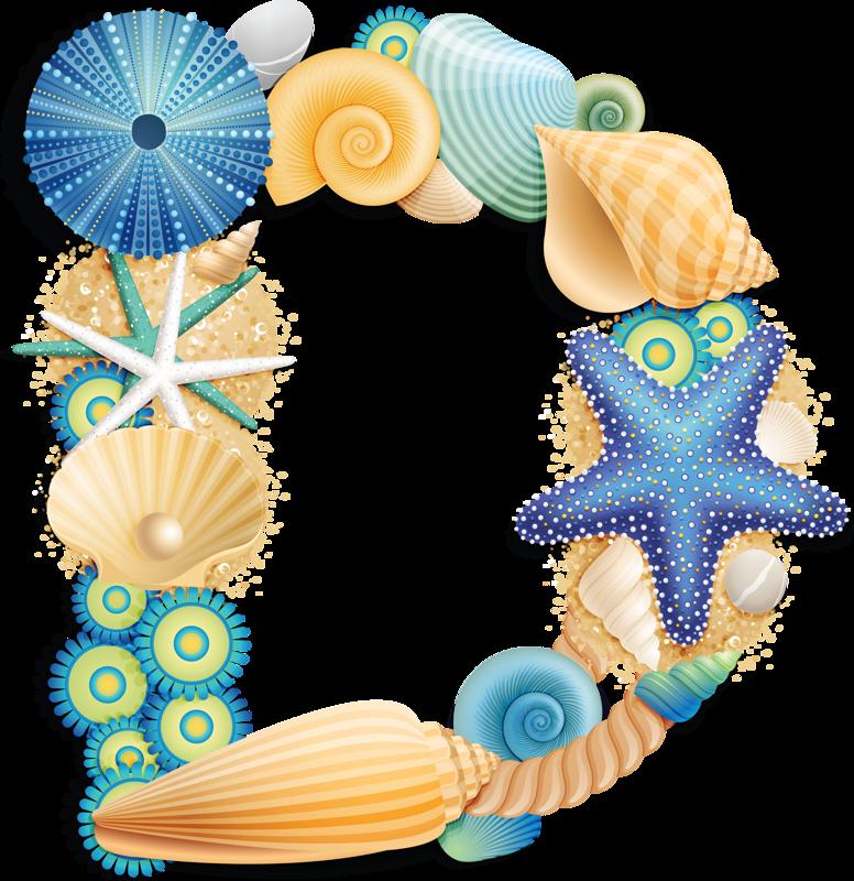 Seashells clipart aqua.  alpha blue png