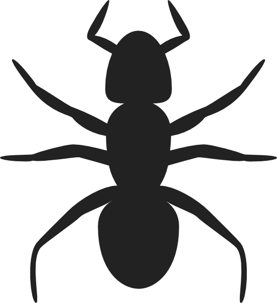 Images of ant outline. Ants clipart simple