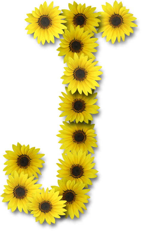 Alfabeto sunflowers j family. Letters clipart delivery