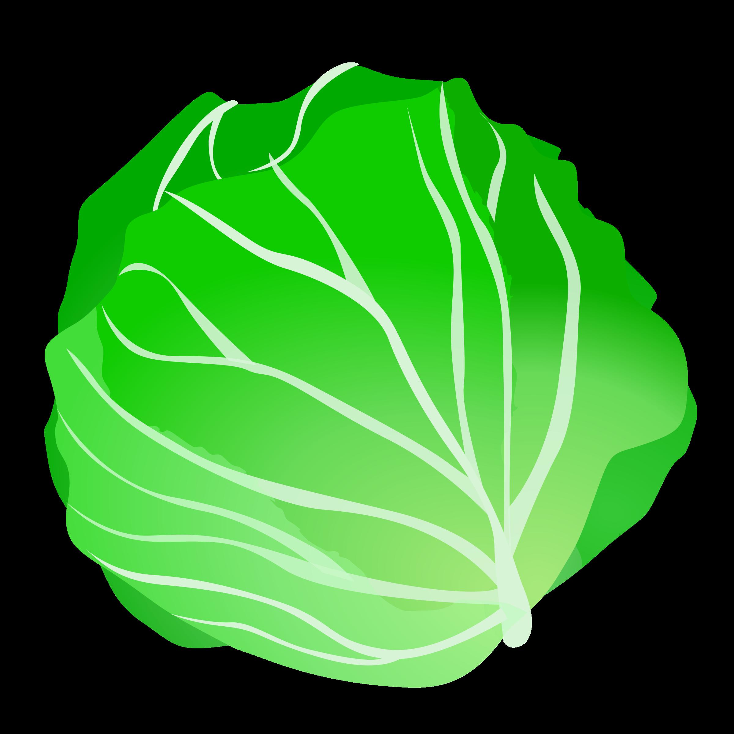 Lettuce clipart. Free pictures clipartix clip