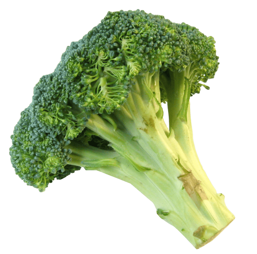 Fresh png free images. Lettuce clipart broccoli