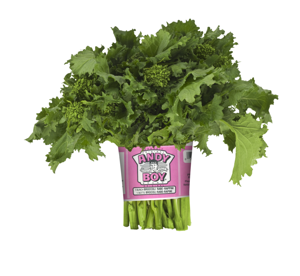 Lettuce clipart broccoli. Products rabe cactus pears