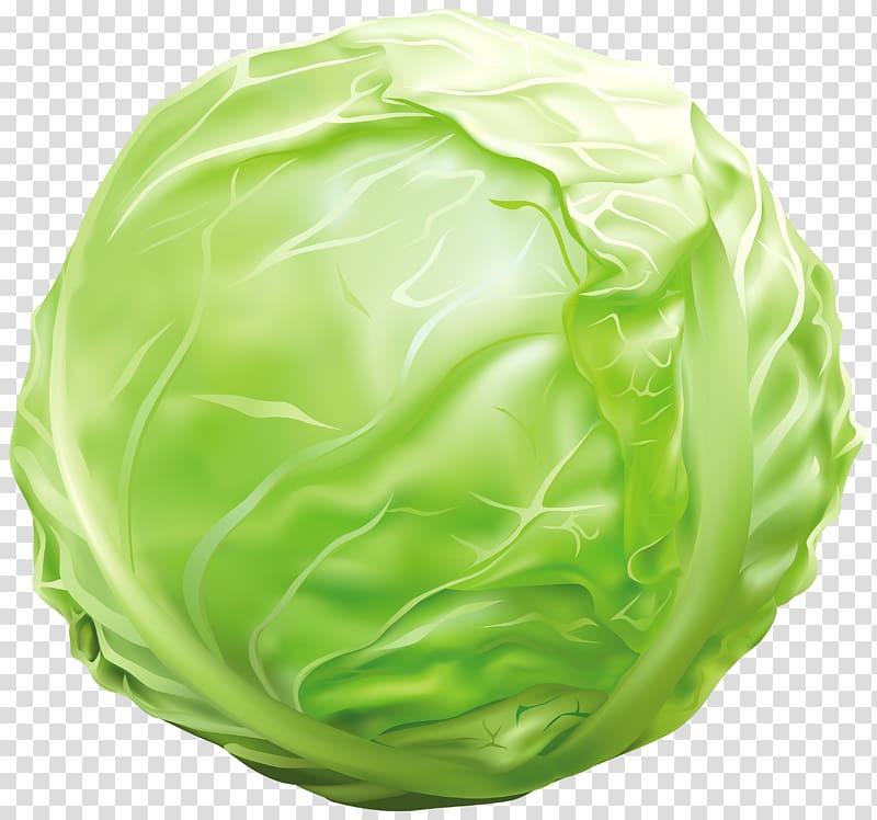 Vegetable transparent background . Lettuce clipart cabbage