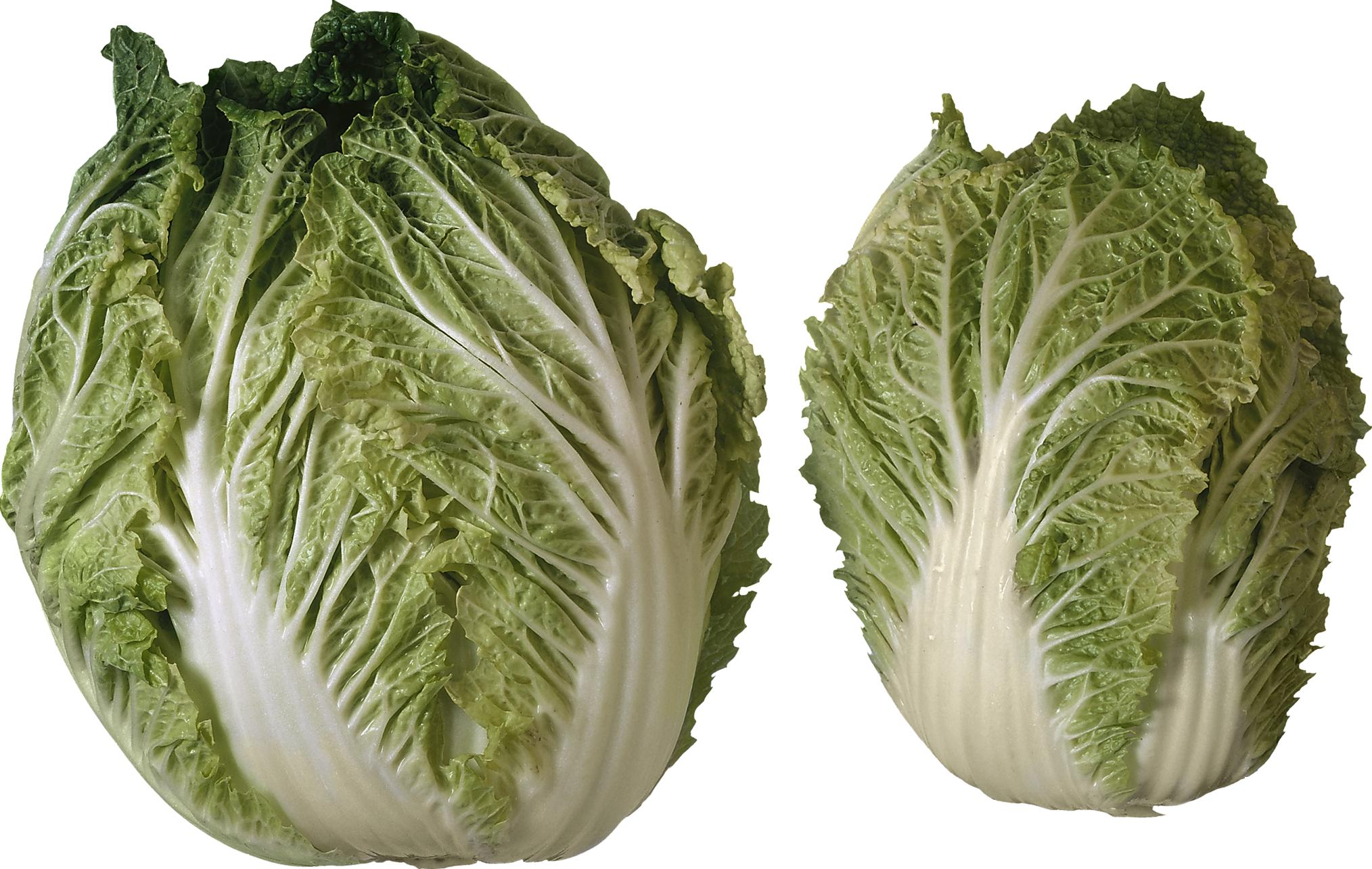 Salad png images free. Lettuce clipart head lettuce