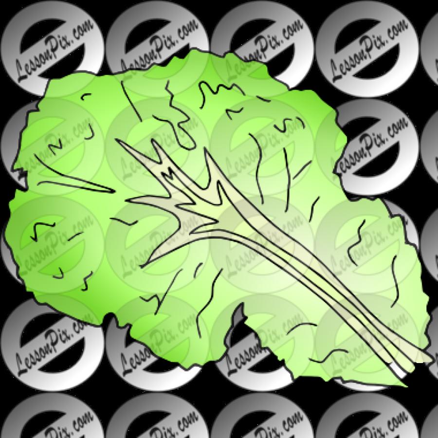 Lettuce clipart lettuce slice. Download leaf black and