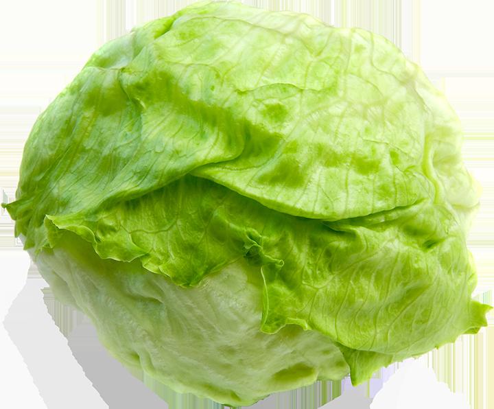 Lettuce clipart lettuce slice. Craft your own salad