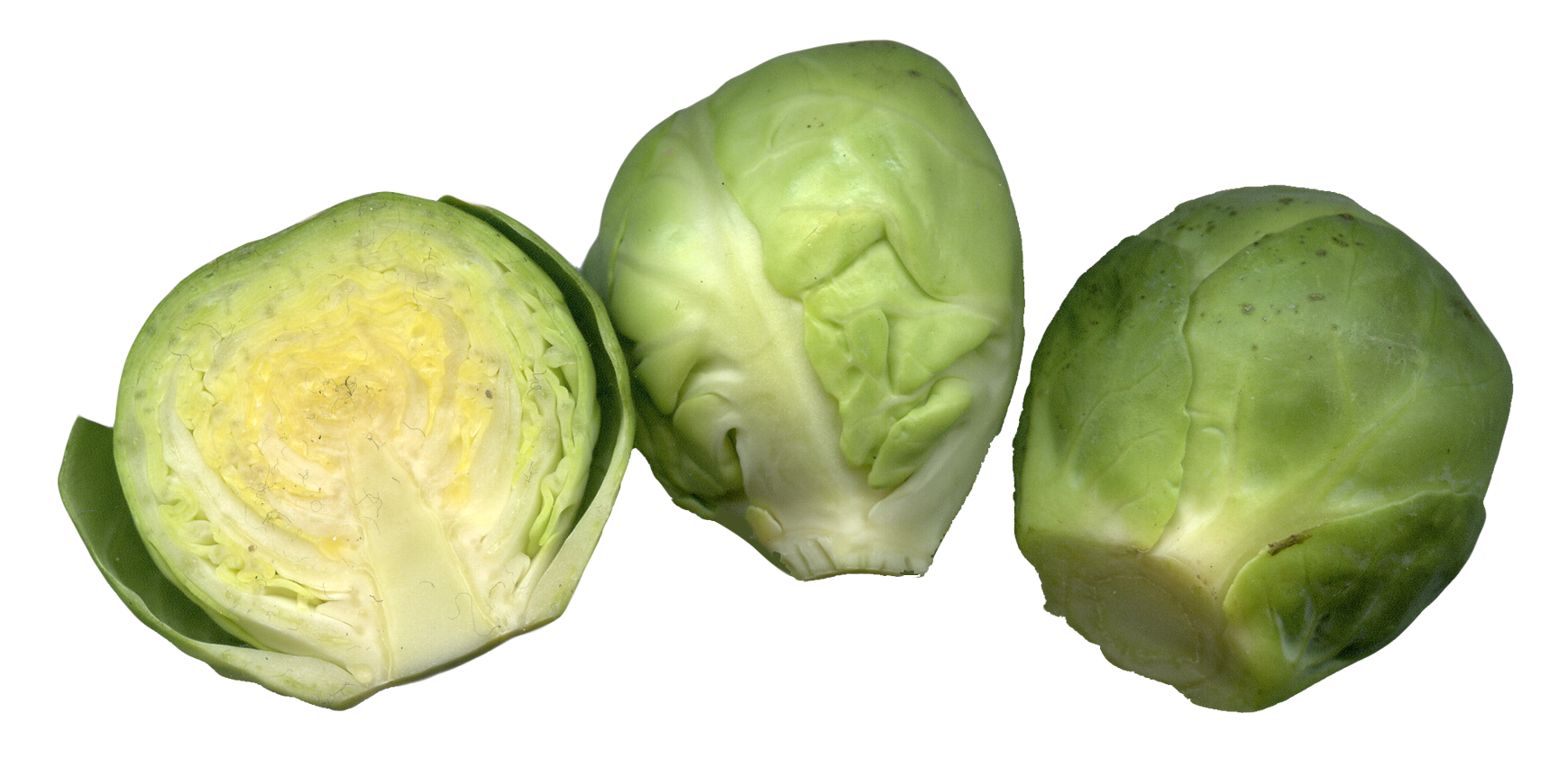 Brussels sprouts cut png. Lettuce clipart sliced