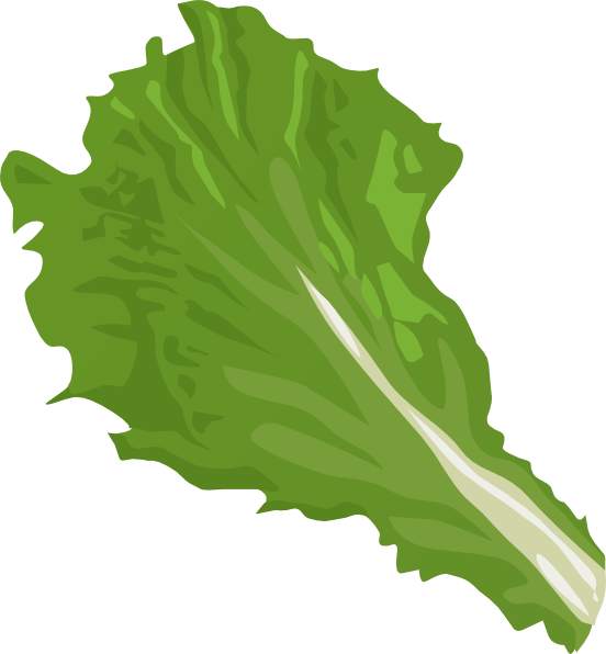 Is raw food healthier. Lettuce clipart sliced