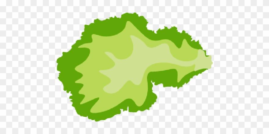 Responsive skrollr template slice. Lettuce clipart sliced