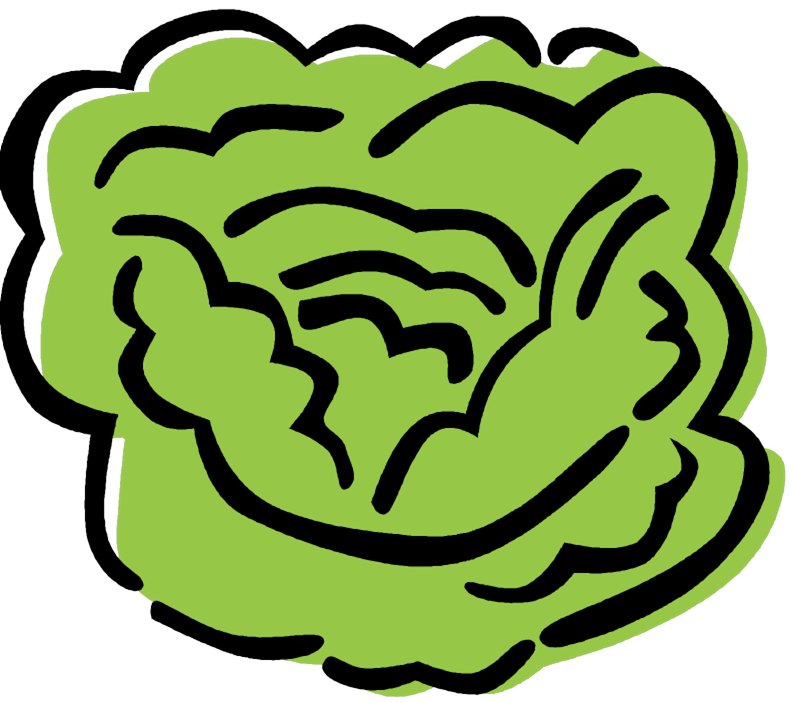Lettuce clipart sliced. Our lady of lourdes