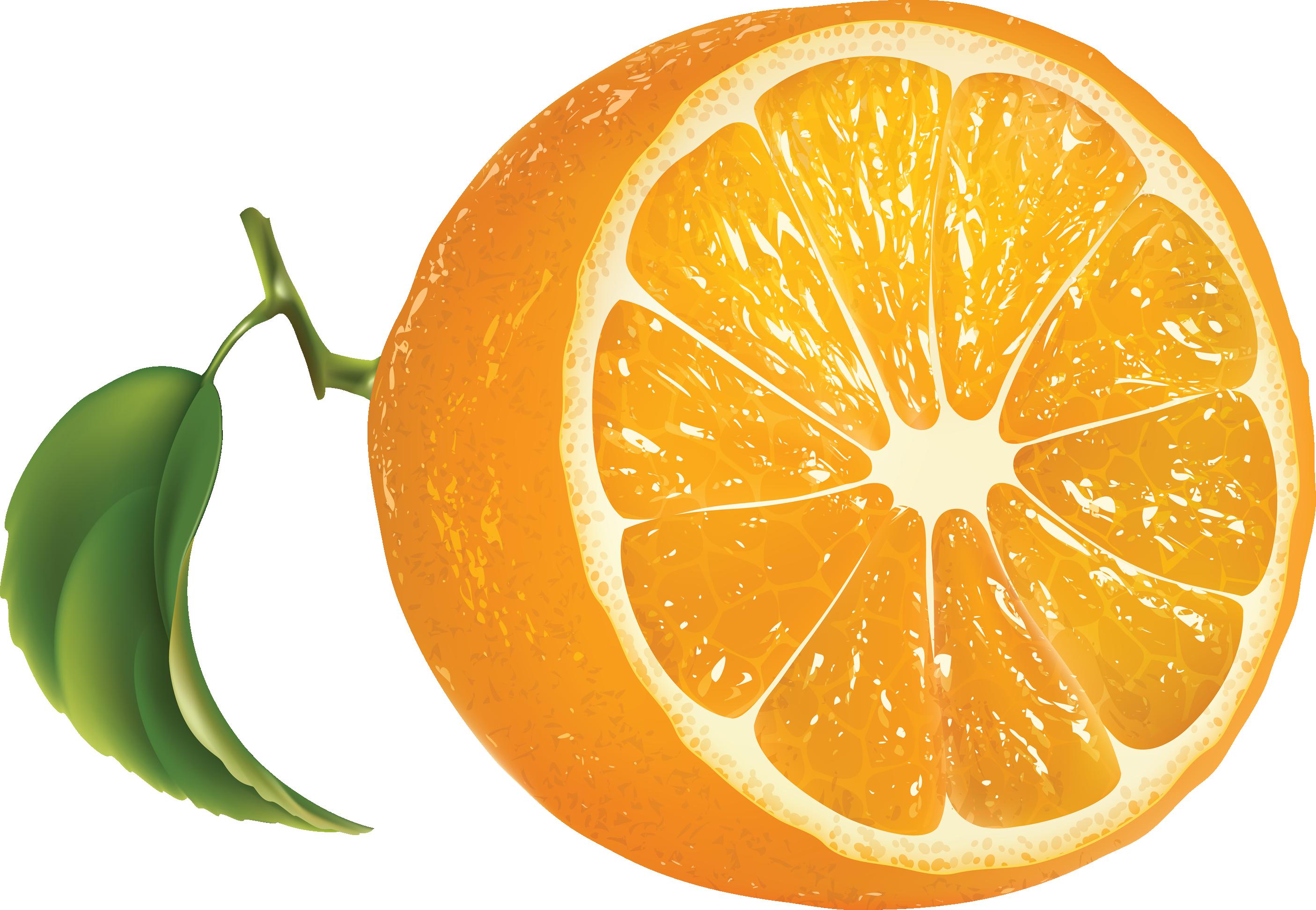 Orange png image purepng. Library clipart transparent