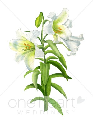 Easter wedding. Lily clipart