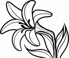 Image result for easter. Lily clipart