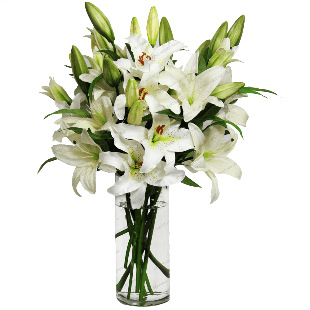 Flower vase png. Lilies in a transparent