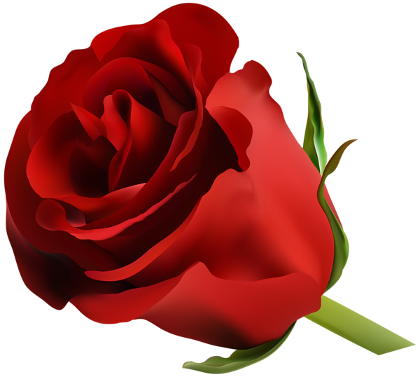 Moving clipart rose. Red png clip art