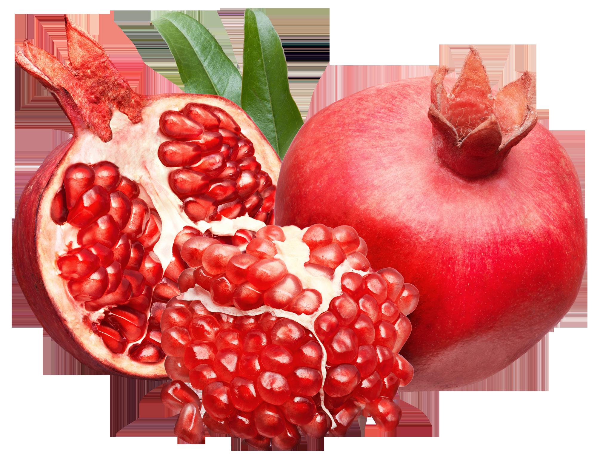 Png picture pinterest. Pomegranate clipart branch