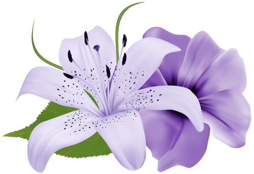 Pin on free clipart. Violet flower png