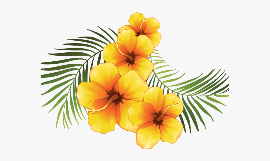 Tropical flowers transparent . Moana clipart exotic flower