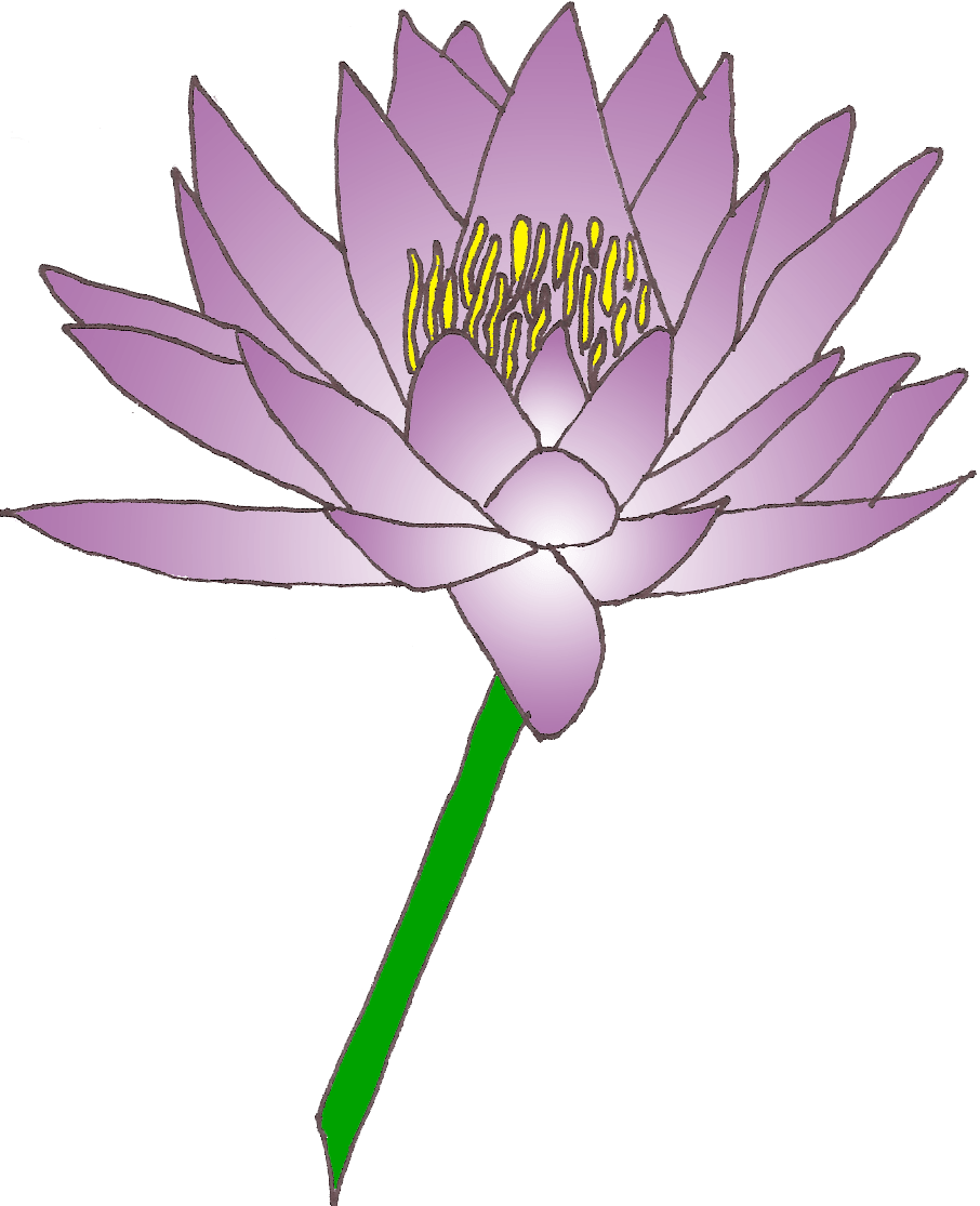 Water lily cliparts png. Lotus clipart waterlily