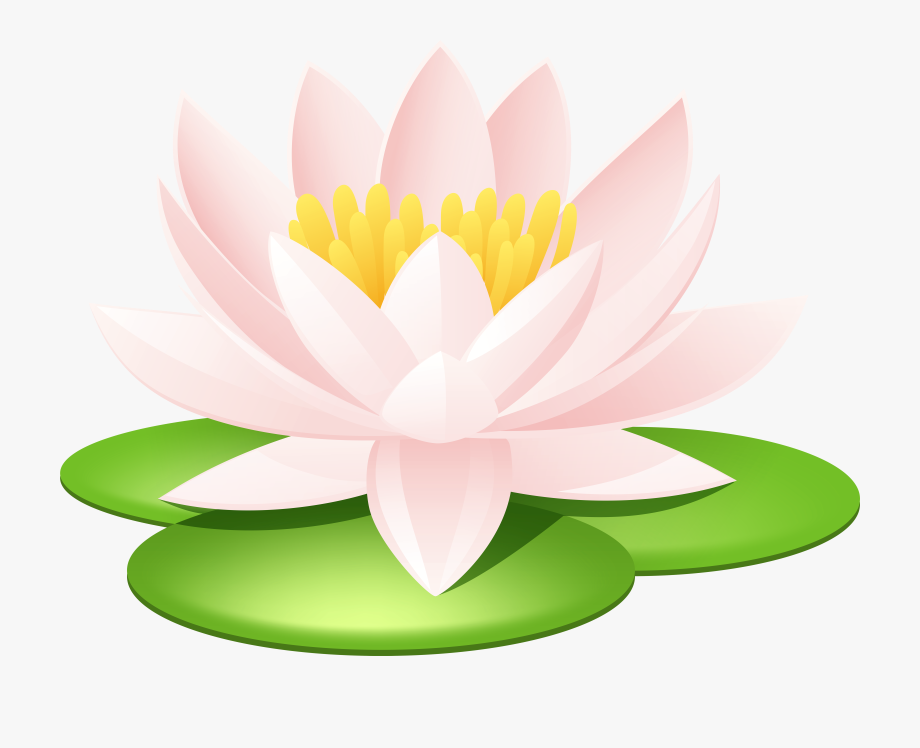 Lily pad flower clip. Lotus clipart waterlily