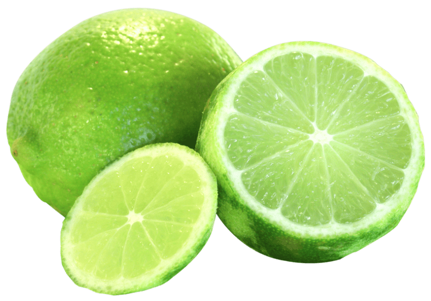 Lime clipart lime slice. Png free images toppng