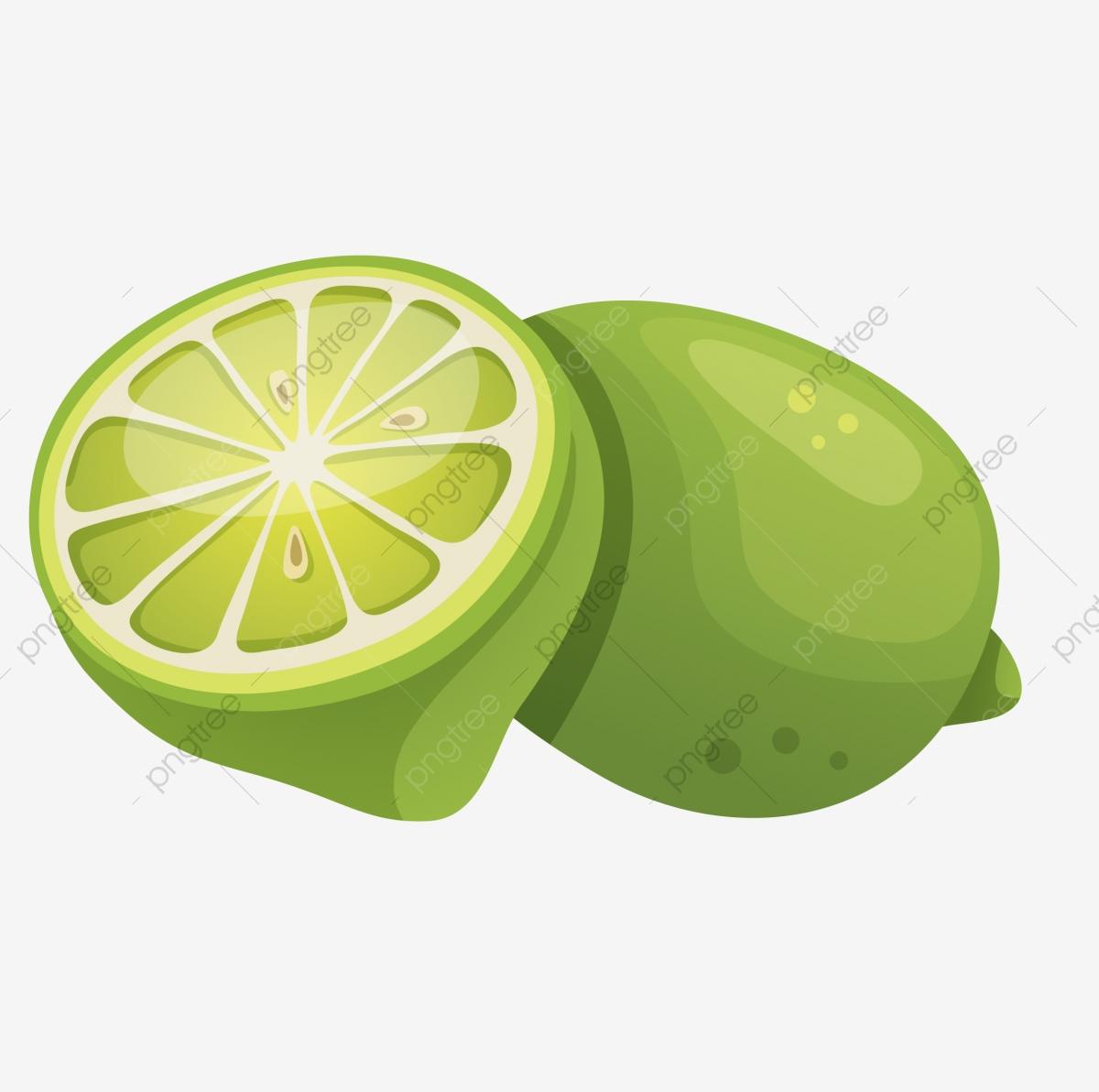 Lemon cartoon hand drawn. Lime clipart summer fruit