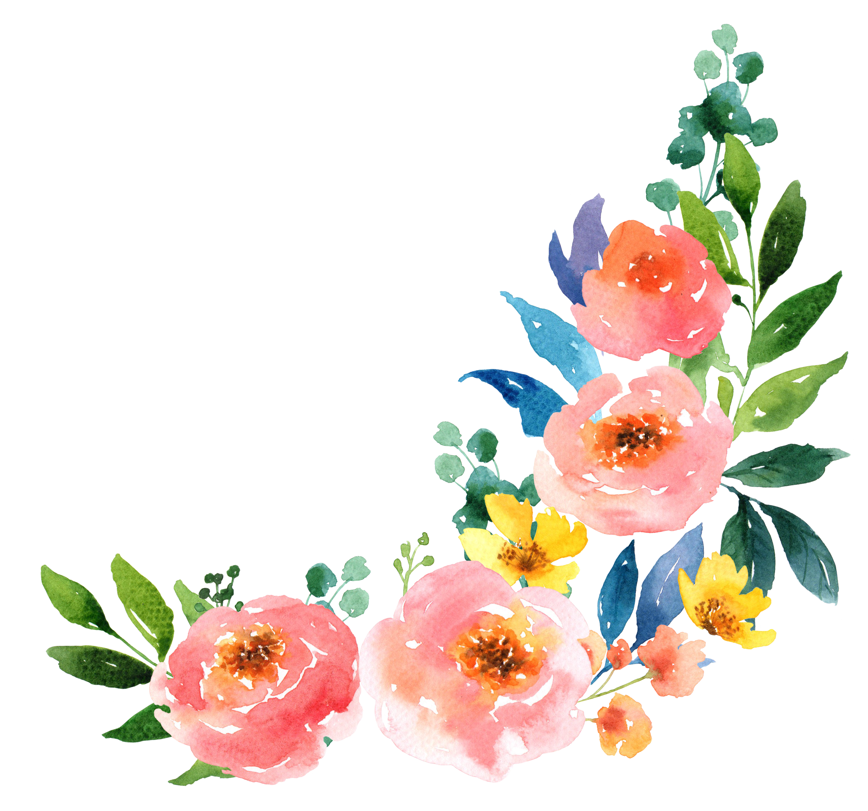 Mango clipart watercolor. Paper watercolour flowers painting