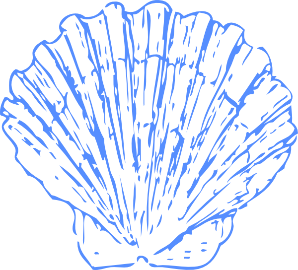 Shell clipart cartoon. Blue png svg clip