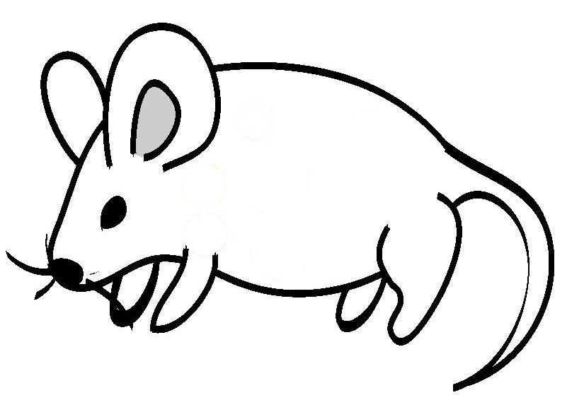 Free drawings of animals. Mice clipart line art