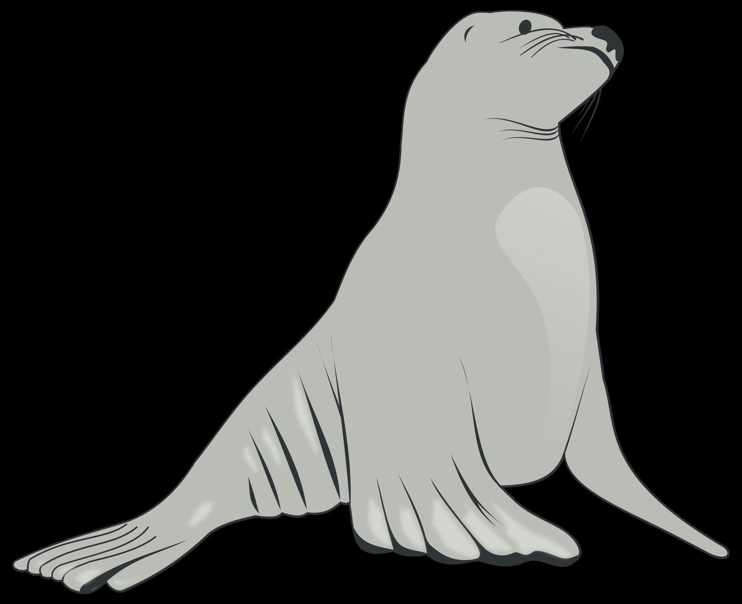 Walrus clipart transparent background sea creature. Lion