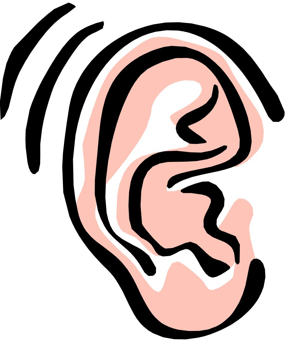Ear clipart. Ears listening panda free