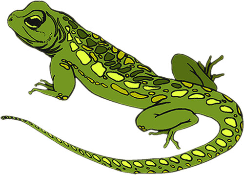 Iguana clipart yellow green. Free lizard cliparts download