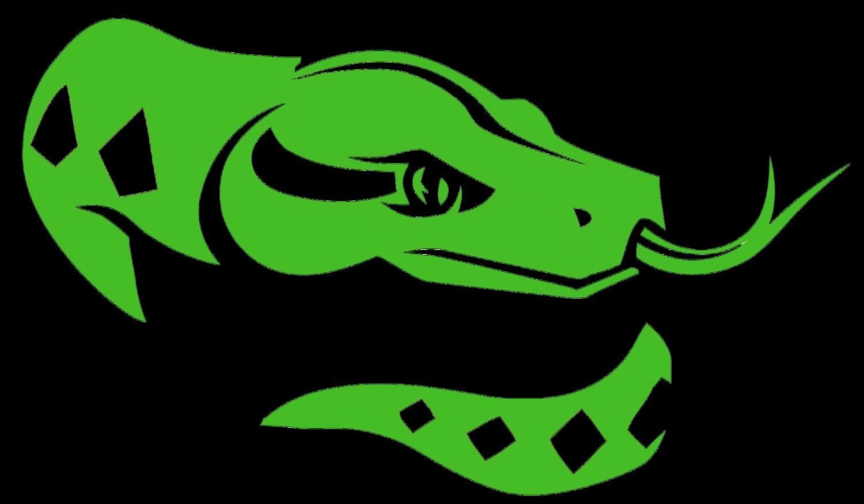 Lizard clipart chipkali. Peter rice reptiles