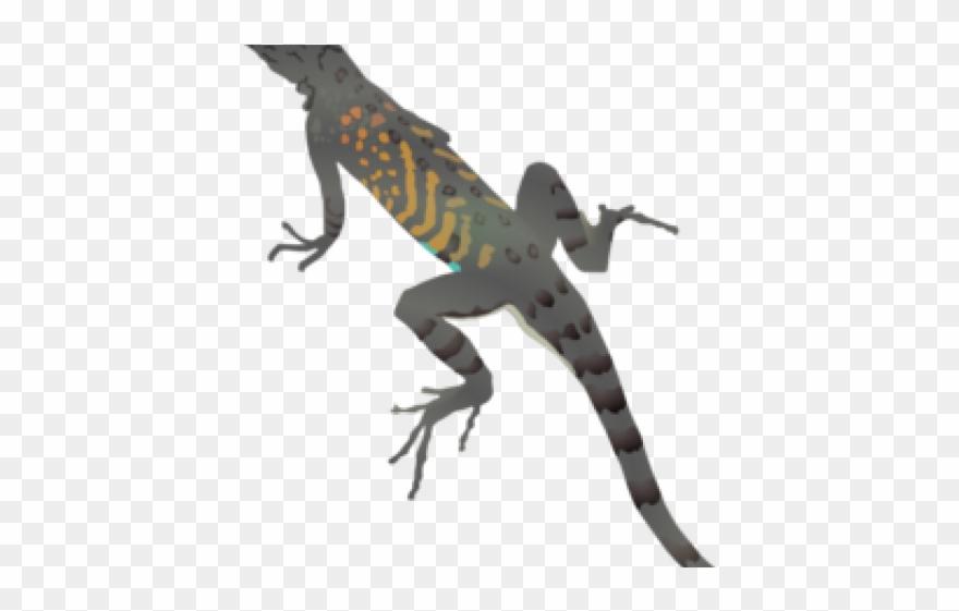 Reptile png download . Lizard clipart chipkali