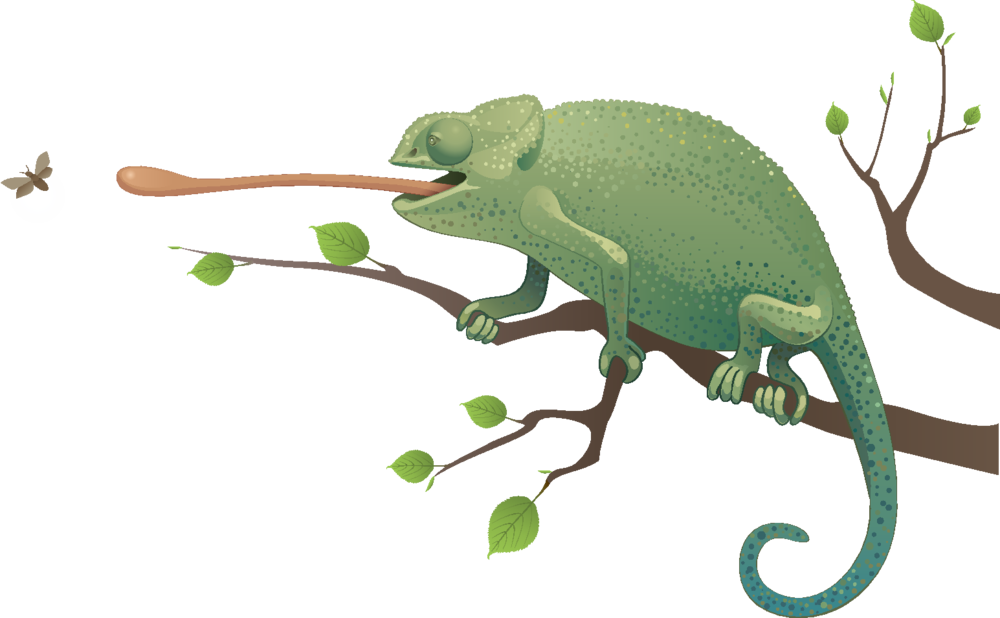 Pet sitting by shellby. Lizard clipart exotic animal