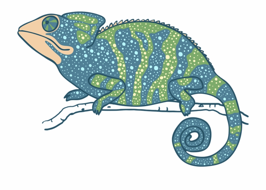 Lizard clipart exotic animal. Chameleon reptile green blue
