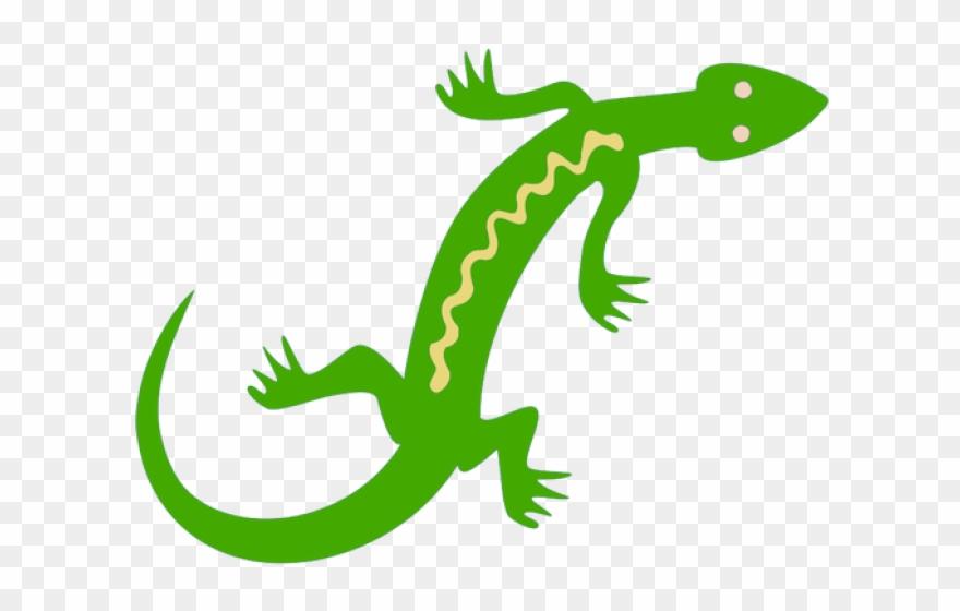 Lizard clipart jungle. Png download