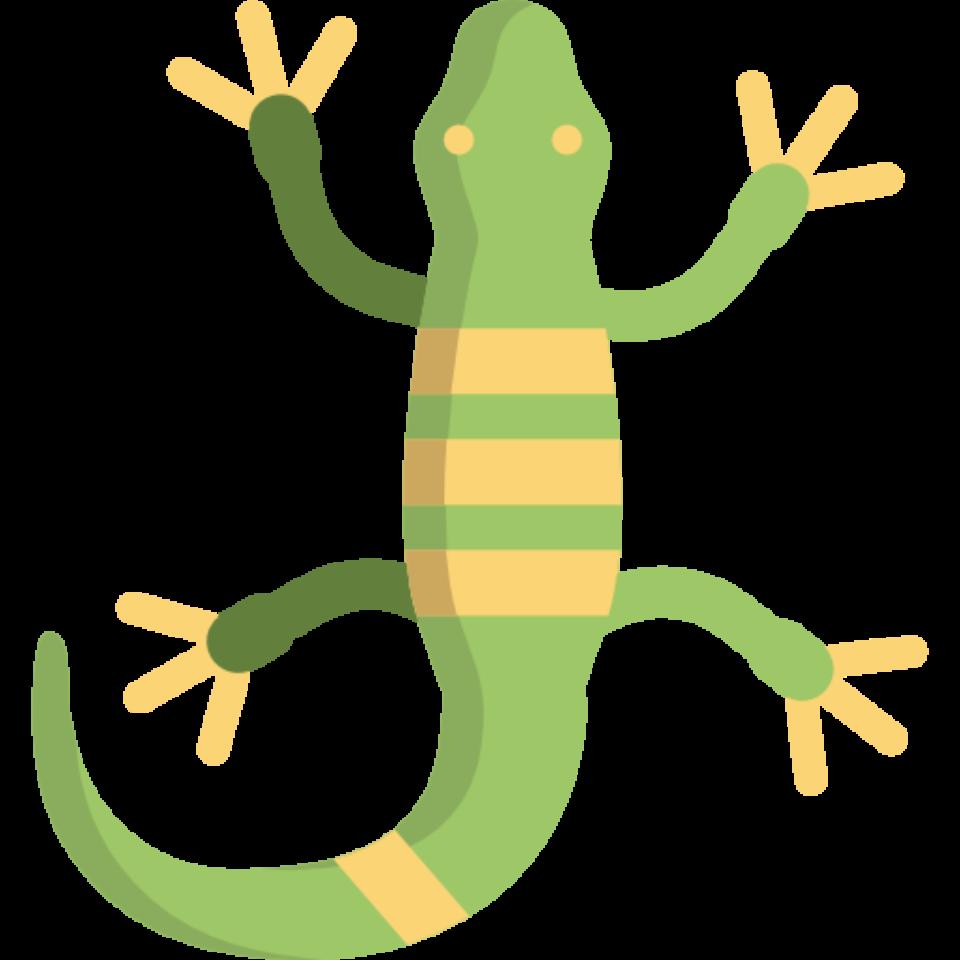 Lizard clipart land animal. Aboriginal hunting methods public