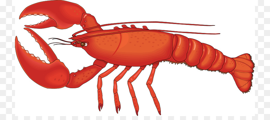 Free content clip art. Lobster clipart