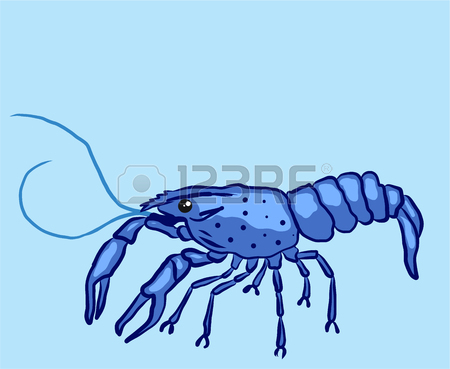Crayfish free download best. Lobster clipart blue lobster