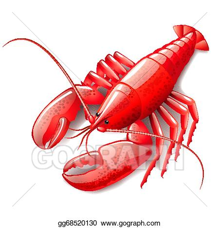 Vector art isolated on. Lobster clipart cooked